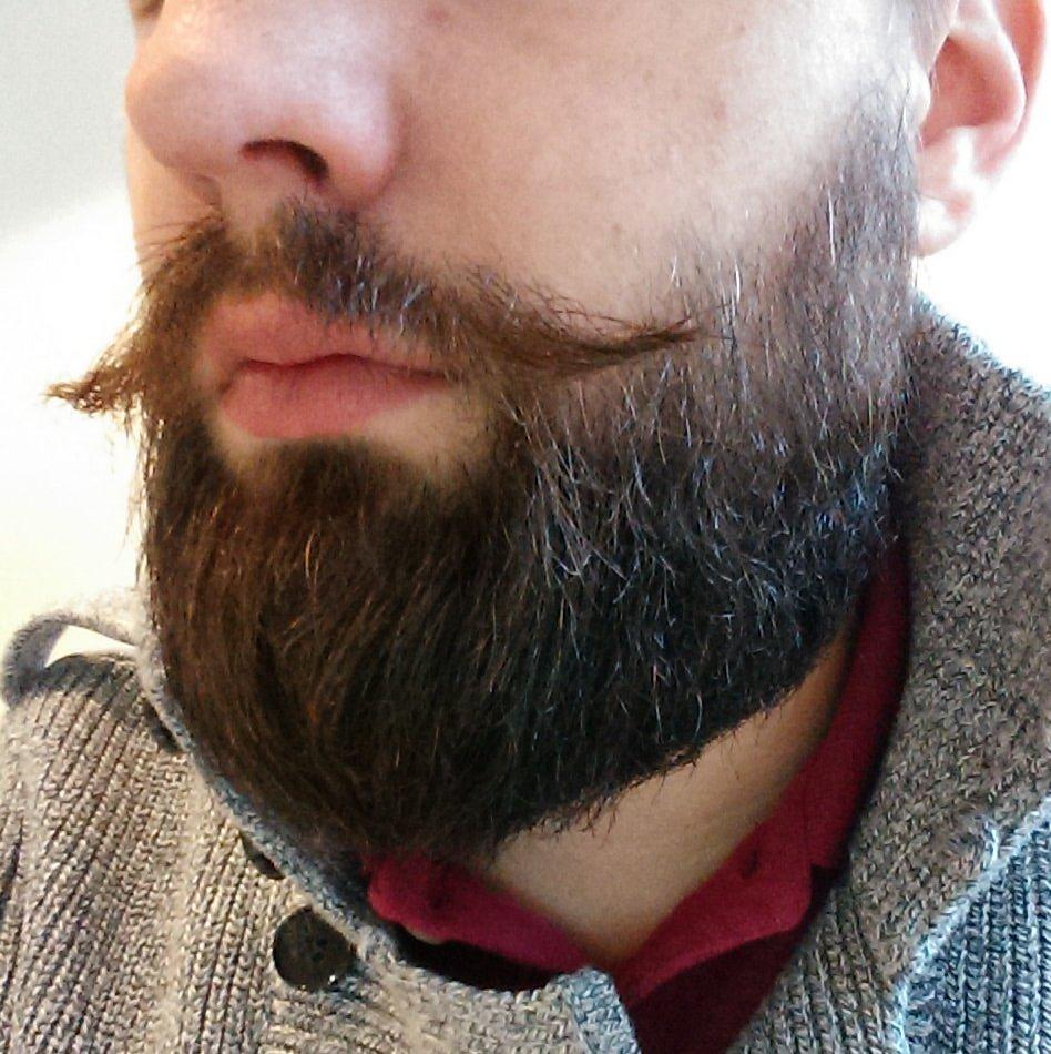 Movember odla mustasch